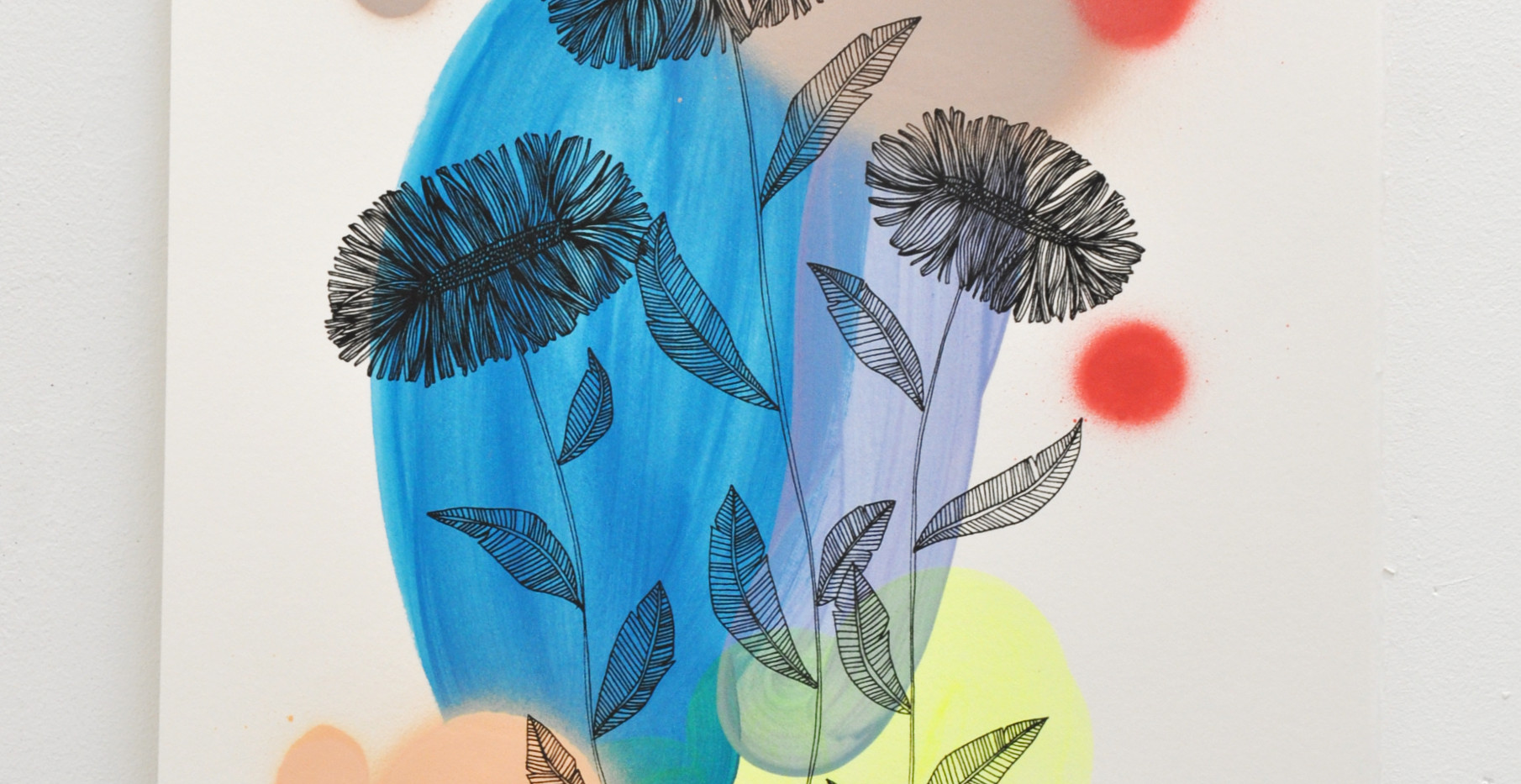 Daisies edition no. 9 of 30, silk screen print on hand painted background, 50 x 35cm