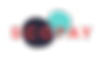 scopay logo.png