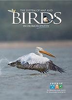 birdbookcover.jpg