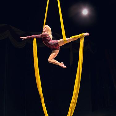 Robin, Circus Center