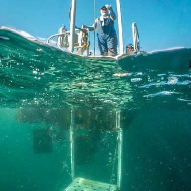 Scuba Heaven Dive Lift