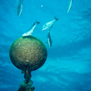Submerged Buoy
