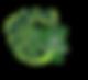BH logo4.png