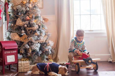 Stephanie Family Christmas 2018-34 copy.