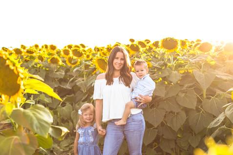 Sunflower - Kerri-4.jpg
