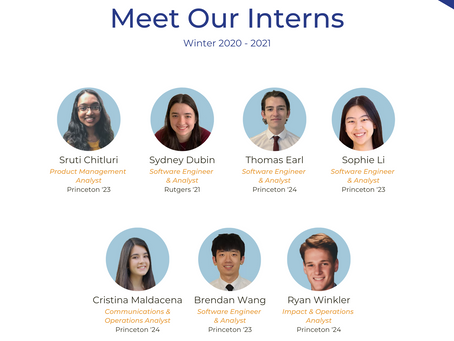 Meet Lambent Data's Winter 2020-2021 Interns