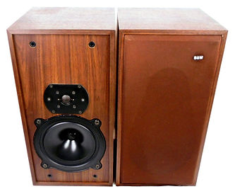 B&W DM-11 Speakers_edited.jpg