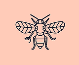Alice-Manchester.jpg