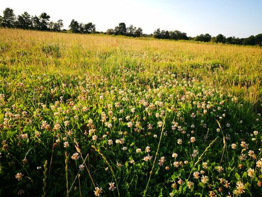Wat is natuurinclusieve landbouw?