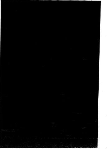 LuziaRux_Ekphorie_Serie4_1000web-(Page01