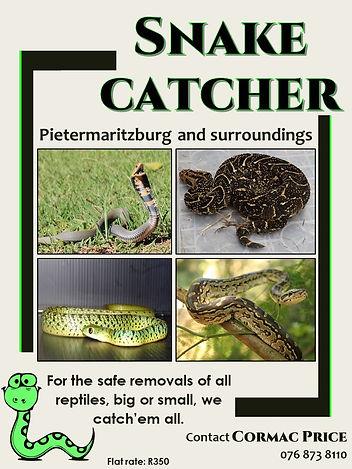 Snake catcher.jpg