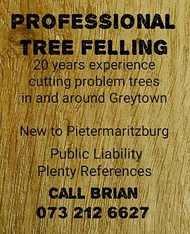 Brian Tree Feller.jpg