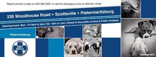 SPCA Pmb.2.png