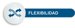 ICONO-FLEXIBILIDAD.png