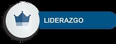 ICONO-LIDERAZGO.png