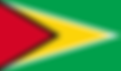 flag-of-Guyana.png
