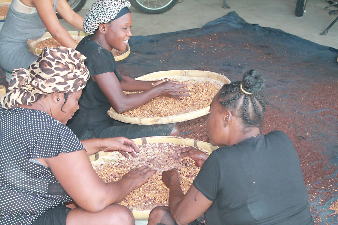 Women workers cleaning roasted peanut for the breakfast program