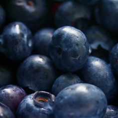 Nutrition, Health & Wellbeing