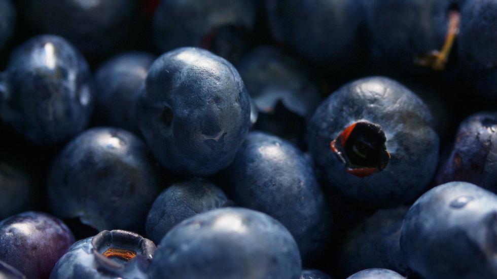 Blue Berry Bergamais