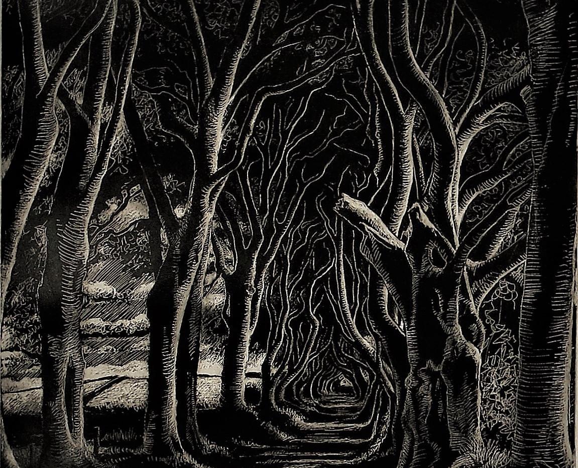 The Dark Hedges II, Co. Antrim