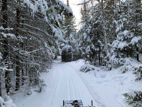 Happy New Year!!   Entire Banadad Trail System (41 km)  Groomed & Tracked