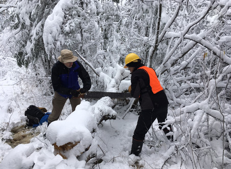 Trail Clearing Weekend
