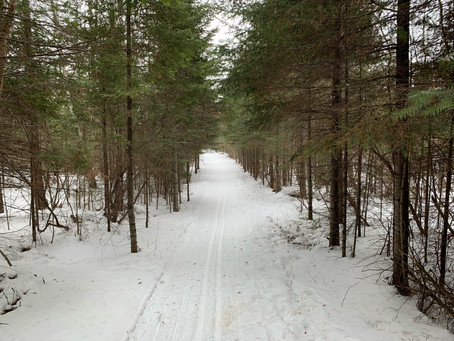 Tracked entire Banadad Trail 2-25-2021