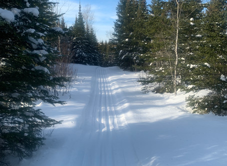 Lace Lake, Tall Pines and first 2 km of Banadad groomed and ready to ski.