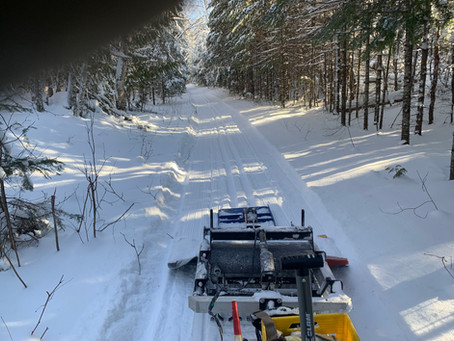 Groomed and Tracked!!    Lace Lake, Tall Pines and Banadad (1st 15 km; to mid Trail Junction)