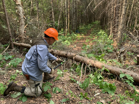 Annual Banadad Trail Clearing Event October 30, 2021