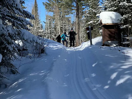 Skiers heading to the Croft Yurt (2/7/2020)