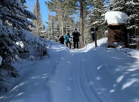 Skiers heading to the Croft Yurt (2/7/2020)