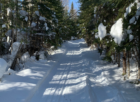 All trails groomed recently, East End just regroomed
