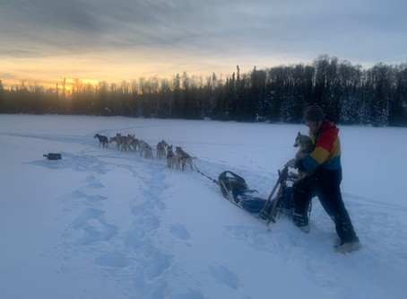 Dog sledding at Poplar Creek B & B