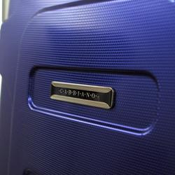 GA1070-BLUE-LOGO.jpg