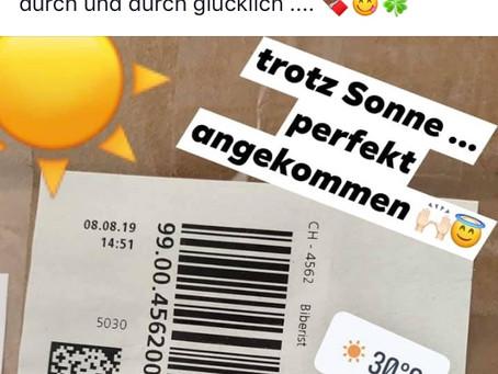 Vielen Dank, liebe Schweizer Holzwolle!