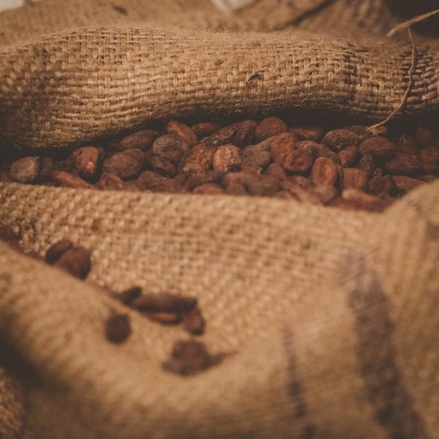 Herrlich: Sackweise Kakaobohnen im Rohstofflager...