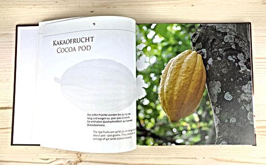 LaSchoggi_Faist-Buch_Innenseiten.jpg