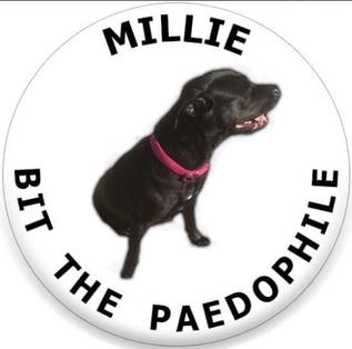 milliebutthepaedophile.PNG