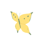 butterfly1_ye_edited.png