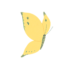butterfly2_ye.png