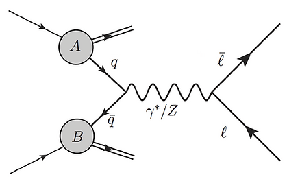 Feynman diagram of the Neutral Current Drell-Yan process. A quark and anti-quark from hadrons annihilate to form a Z/γ which  decays into two opposite charge leptons