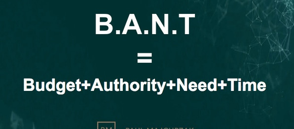 Prospecting rules: B.A.N.T