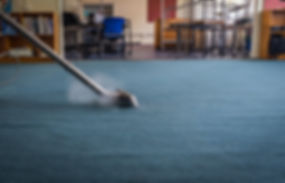 Professional Steam Carpet Cleaning using