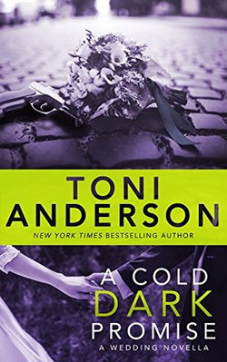 A Cold Dark Promise by Toni Anderson