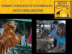 Reino Animal Edo de México