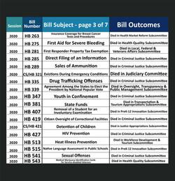 Anna V. Eskamani Legislative Record Pt. 3