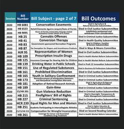Anna V. Eskamani Legislative Record Pt. 2