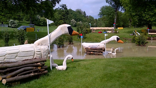 Bramham International horse trials Evansjumps swans carvings water jump