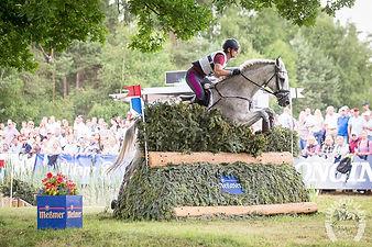 horse jump luhmulen